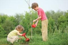 «Милосердное лето» – конкурс для детей и подростков