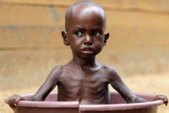ООН: Число голодающих в мире выросло впервые за 10 лет