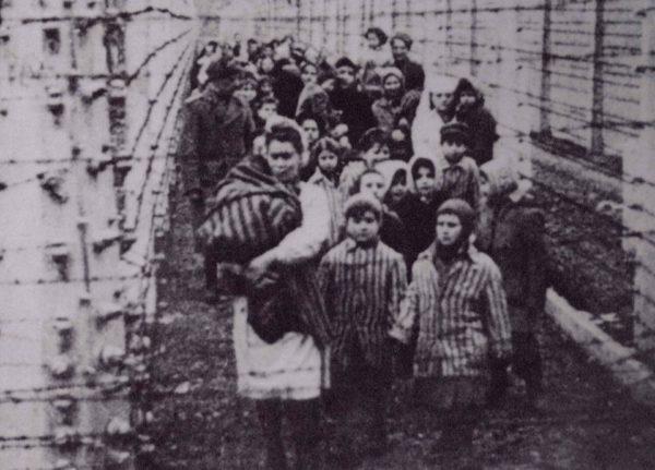 Я почувствовала себя свободной от Освенцима