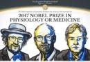 Нобелевская премия по медицине присуждена за исследование о биологических часах