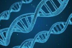 Американские ученые испытывают первую персональную вакцину от рака