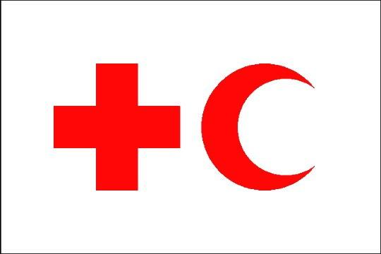 Волонтеры Красного Креста готовы помочь пострадавшим от землетрясения в Иране