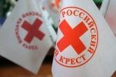 Волонтеры собрали больше тонны гуманитарной помощи для погорельцев в Сочи