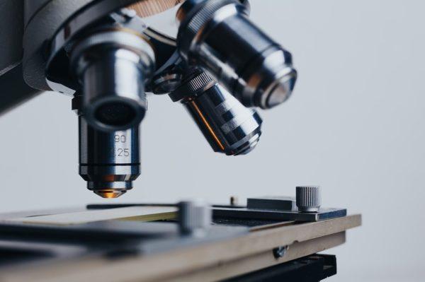 Минобрнауки увеличит разностороннюю поддержку молодых ученых