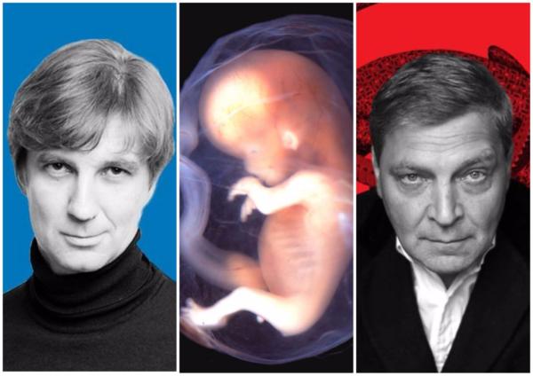 Кучер и эмбрионы