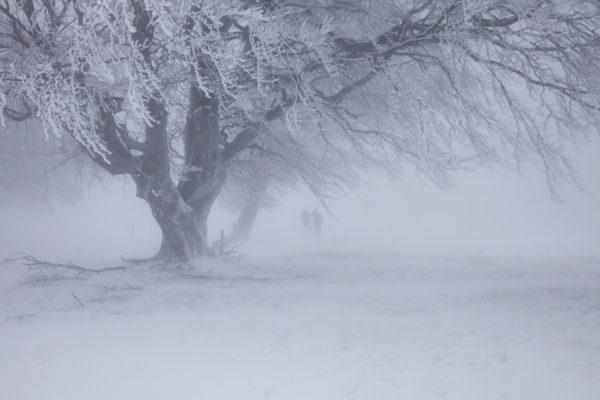 Метели на Сахалине: дороги занесены, паромы стоят, города и села остались без света