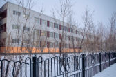 Преподавателя уренгойской гимназии предложили уволить за выступление ученика в бундестаге