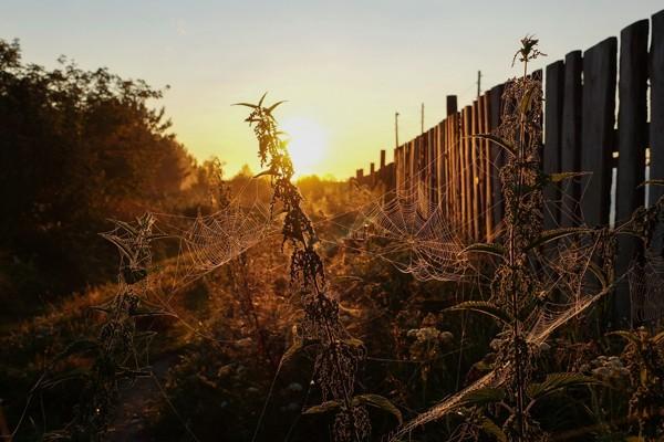 Утро нового дня – с Богом на «ты»