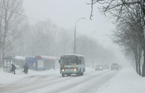 Владимирский студент спас пассажиров маршрутки — ее водитель потерял сознание