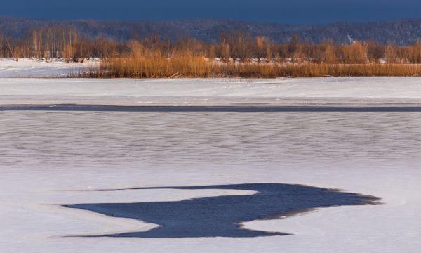 «Лиза Алерт»: Взрослые, не допускайте хождения детей по льду