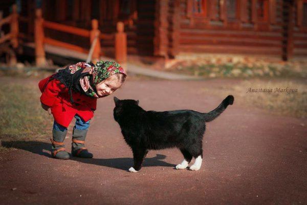 Духовные упражнения. Выпуск 4. О чем молчат кошки?