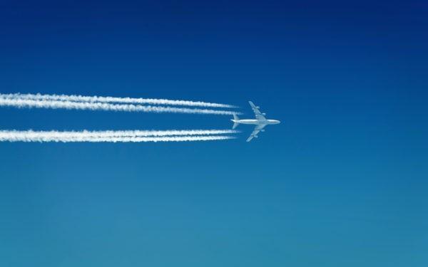 Проверка после крушения Ан-148:  Почти 70 пилотов работали по недействительным сертификатам
