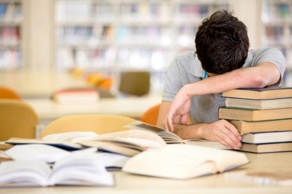 Учителя литературы: Новый школьный стандарт  Минобрнауки  подрывает авторитет российского образования