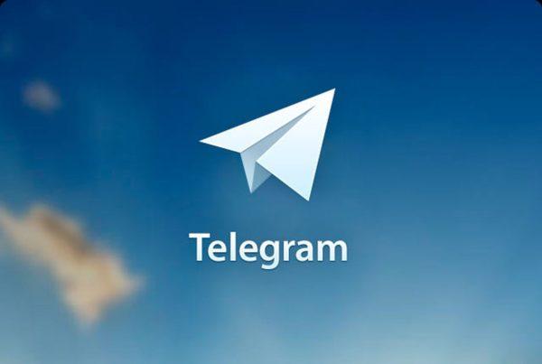 Председатель СПЧ призвал Роскомнадзор не блокировать Telegram