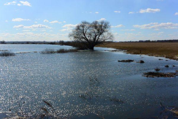 Рязанские монахи организовали переправу через реку на время паводка