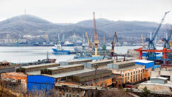 Приморские рыбаки пять дней не могли пришвартоваться в порту из-за спасенных собак