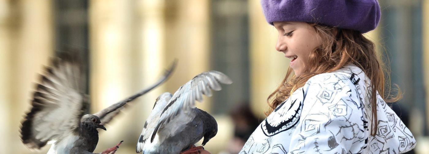 На Благовещение мы отпустим спасенного голубя