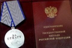 Защищавшая детей учительница пермской школы награждена медалью «За отвагу»