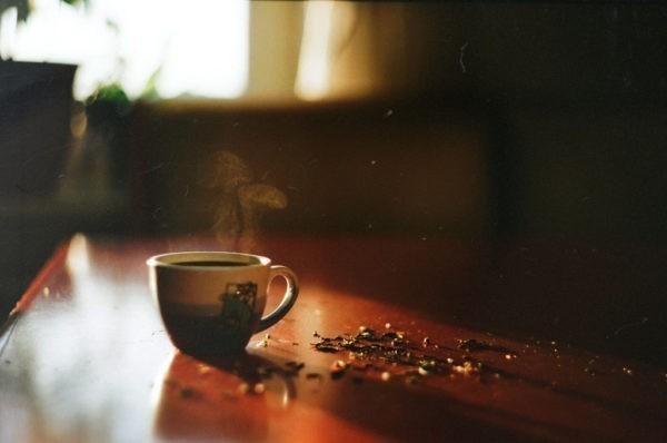 Чай с бегемотом в воскресение мертвых