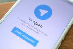 В защиту Telegram выступили более 50 международных правозащитных организаций