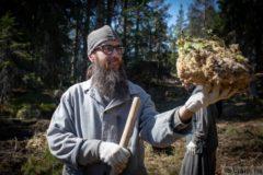 Монахи Валаама начали масштабный проект по спасению лесов архипелага