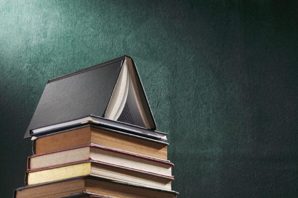 Учителя: Выражаем недоверие дополнительной экспертизе учебников по литературе