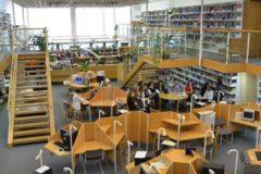 Московскую высшую школу социальных и экономических наук (Шанинку) лишили госаккредитации