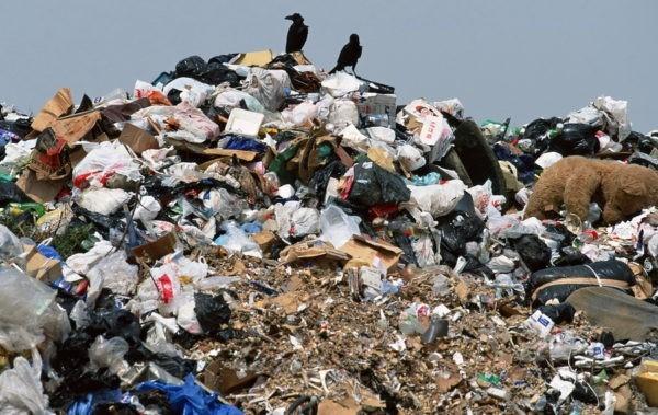 200 заводов по утилизации мусора появятся в России в ближайшие годы