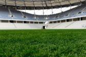 Организаторы опровергли подмену сироты на сына сотрудницы центра на матче ЧМ-2018
