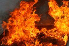 Полицейские спасли 50 постояльцев петербургского хостела во время пожара