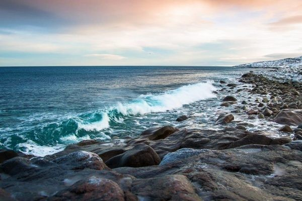 Ученые считают, что экосистеме Баренцева моря грозит катастрофа