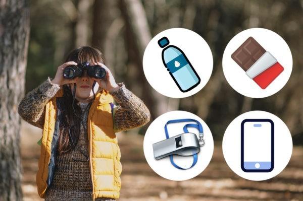 Телефон, вода, шоколадка и свисток – что еще спасет жизнь ребенка в лесу