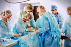 Российские ученые увеличили в 4 раза срок хранения донорского сердца