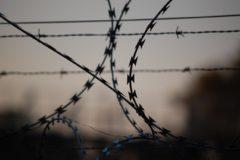 ФСИН начала проверку из-за видеозаписи с пытками заключенного в ярославской колонии