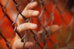 В России в современном рабстве находятся 800 тысяч человек – правозащитники