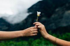 Почему тяжело принять чужую добродетель