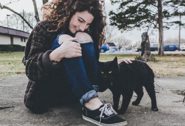 «Верую в черную кошку» – кто заставляет приметы «работать»