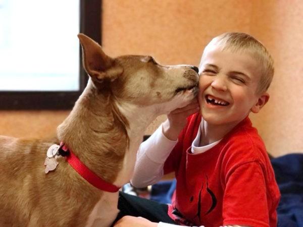 «Когда вы смотрите ему в глаза, с вами говорит его сердце» – как маленький мальчик спас тысячу собак