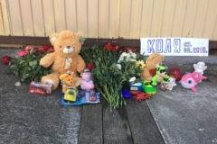 СК расследует гибель ребенка в ливневой канаве в Сочи
