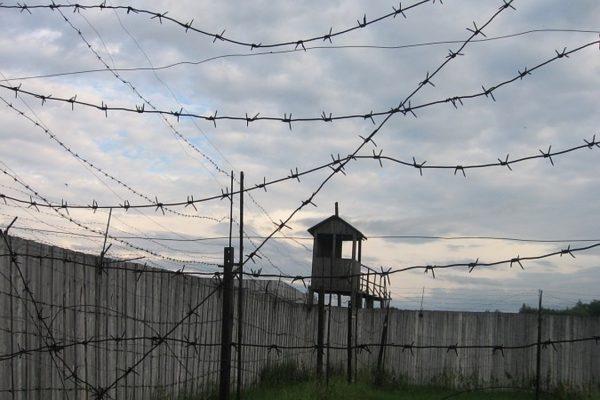 ФСИН проверит сообщения об избиениях и пытках в петербургских СИЗО и колониях