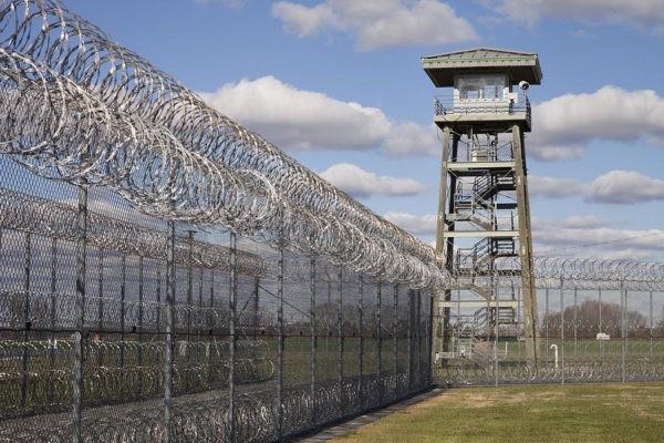 Задержаны еще четверо подозреваемых по делу о пытках в ярославской колонии