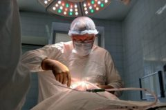 Лучший новосибирский врач взял отпуск, чтобы бесплатно лечить детей из алтайских сел