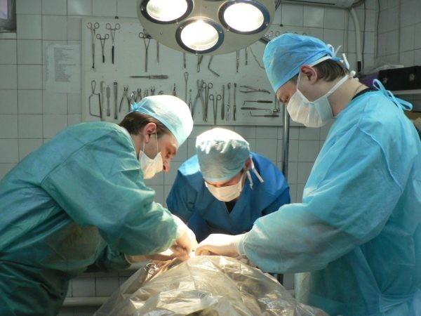 Больница оплатила операцию жительницы Волгограда, для которой сын искал лекарство через объявления