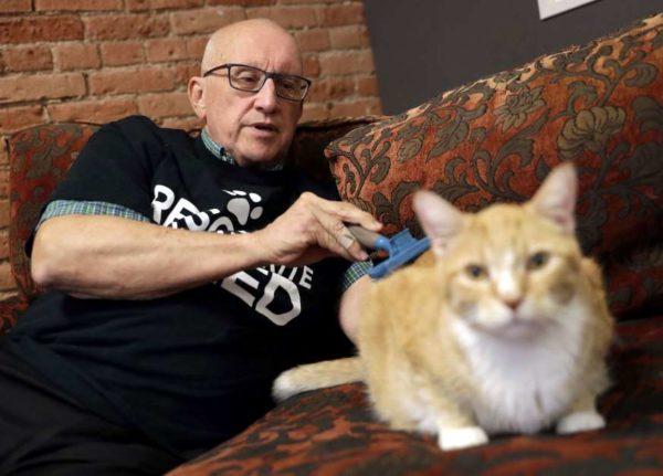 Пожилой волонтер дремал с кошками в приюте и собрал деньги на 50 операций для них