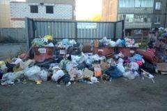 В Челябинске введен режим ЧС из-за мусорного коллапса