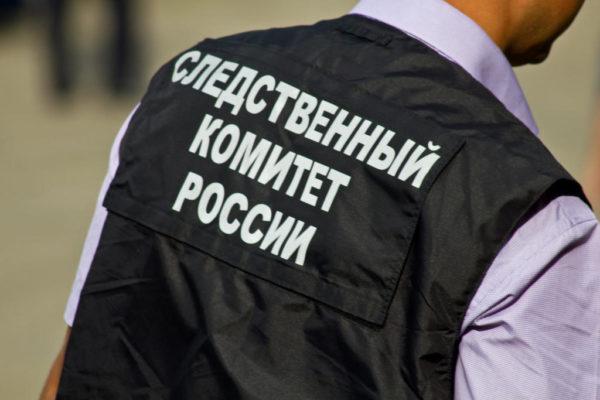 В Хабаровске мать-одиночка отдала дочь знакомой из-за нехватки денег