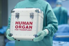 Новый закон о донорстве органов признан эталоном в мире – Вероника Скворцова