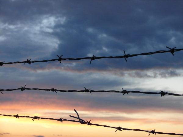 Беременных осужденных и женщин с детьми предлагают освобождать из тюрьмы досрочно