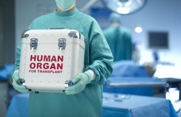 Стать донором после смерти через МФЦ и портал госуслуг?