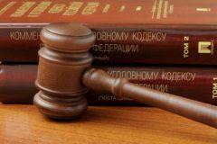 Владимир Путин предложил смягчить уголовное наказание за экстремизм